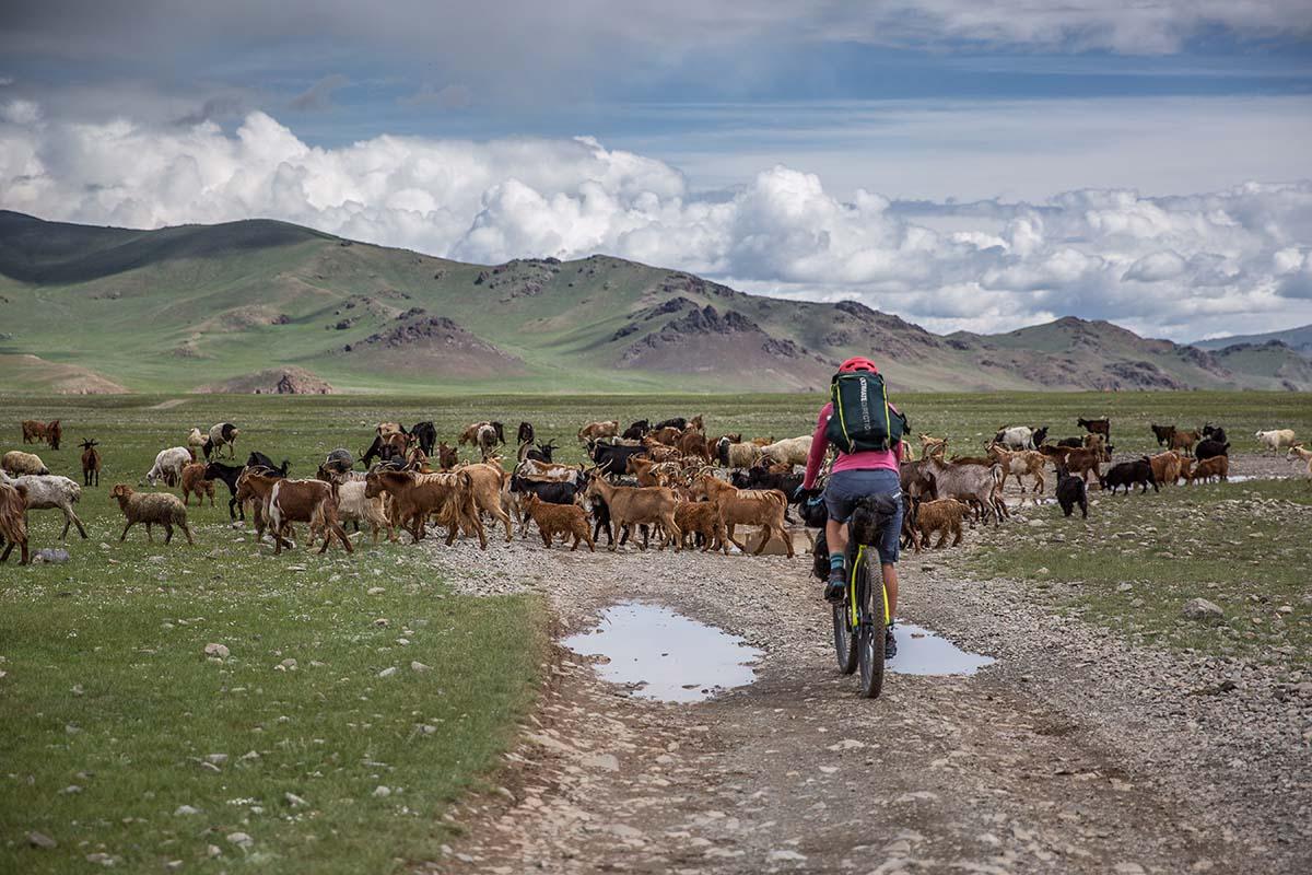 Bikepacking Mongolia's Khangai Mountains | Switchback Travel