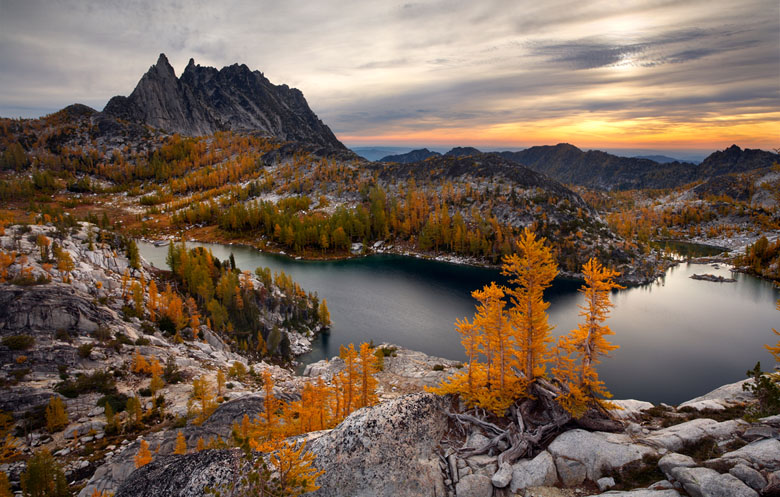 Washington Enchantments