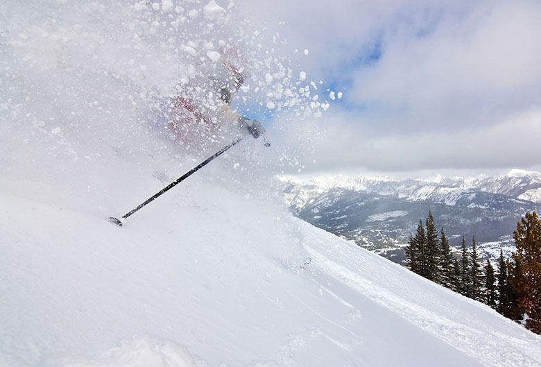 Ski Pole (skiing in powder)