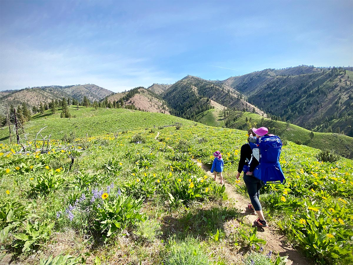 Osprey Poco Plus baby carrier pack (hiking through flowers)