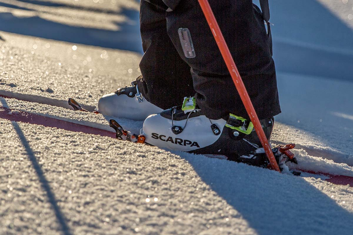 Backcountry Skis (Scarpa Maestrale boots)