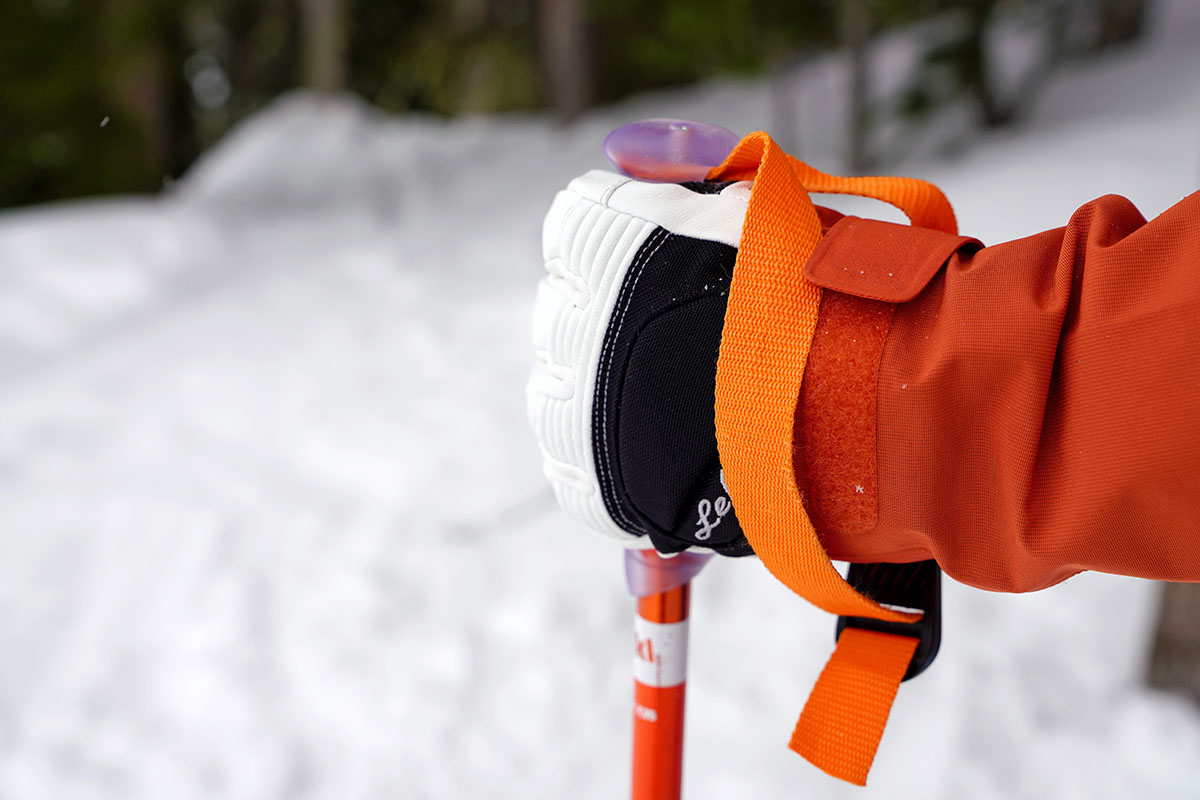 Ski pole (holding pole with Leki gloves)