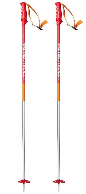 6c050be1a845 Volkl Phantastick 2 alpine ski poles