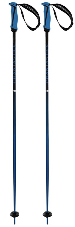 Volkl Phantastick downhill ski pole