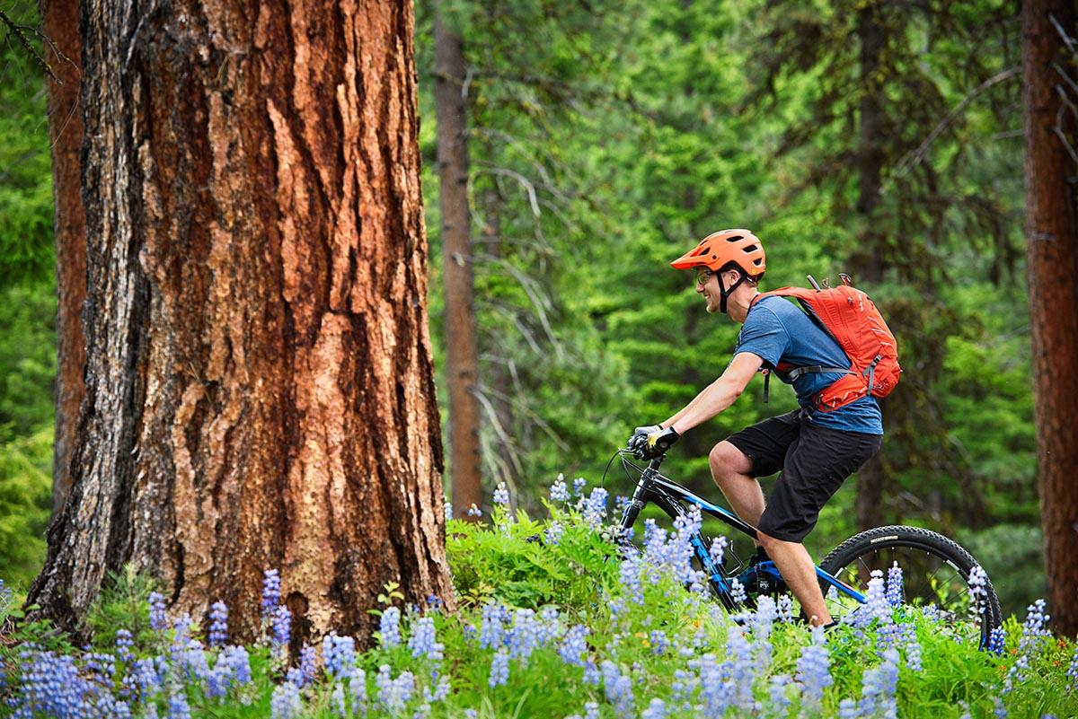 Best Mountain Bike Brands of 2019   Switchback Travel