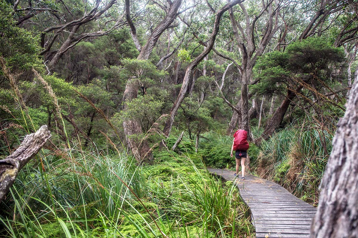 Great Ocean Walk (hiking along boardwalk)