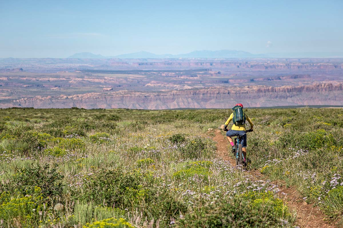 Bikepacking through wildflowers with desert in distance