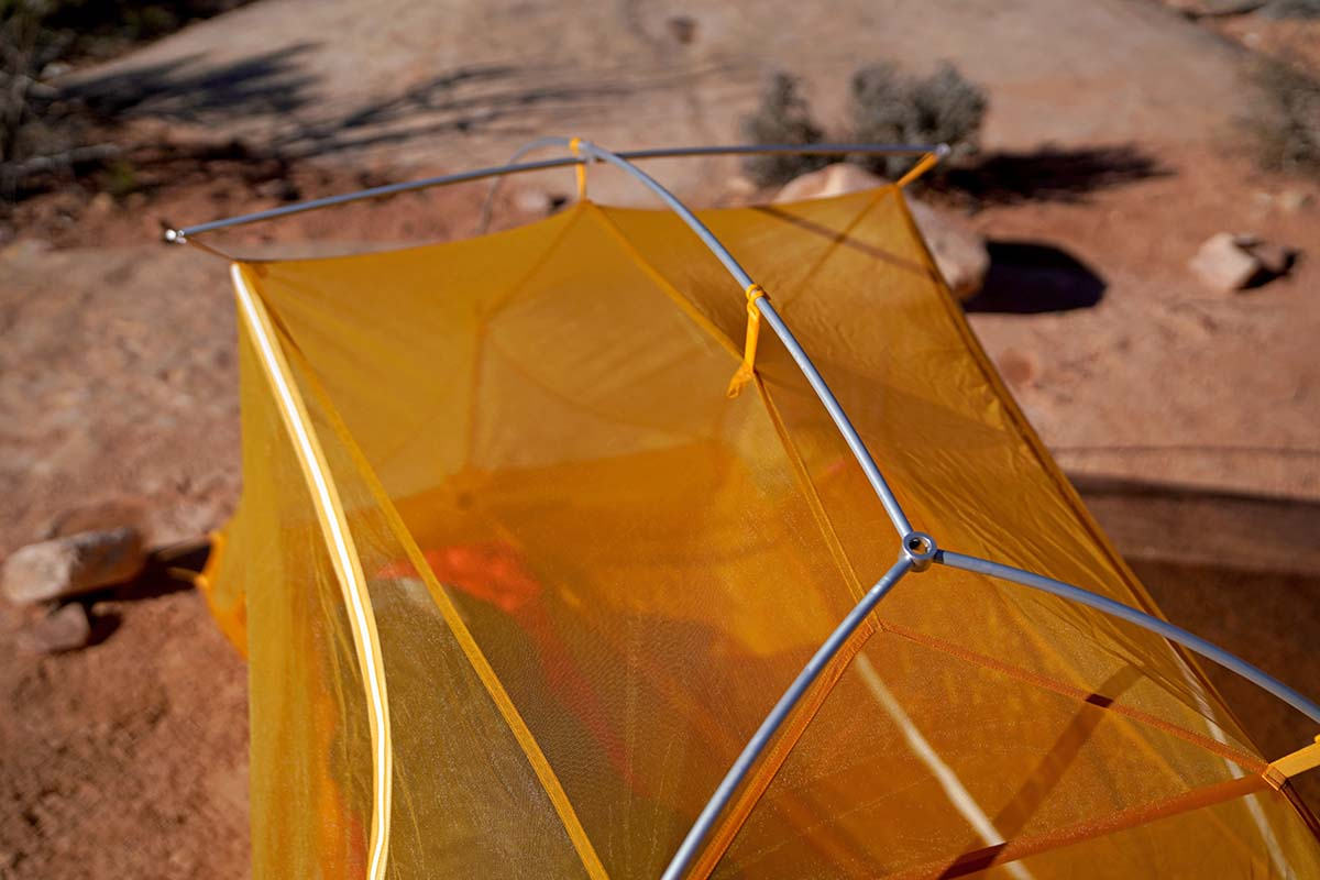 Big Agnes Tiger Wall (pole structure)
