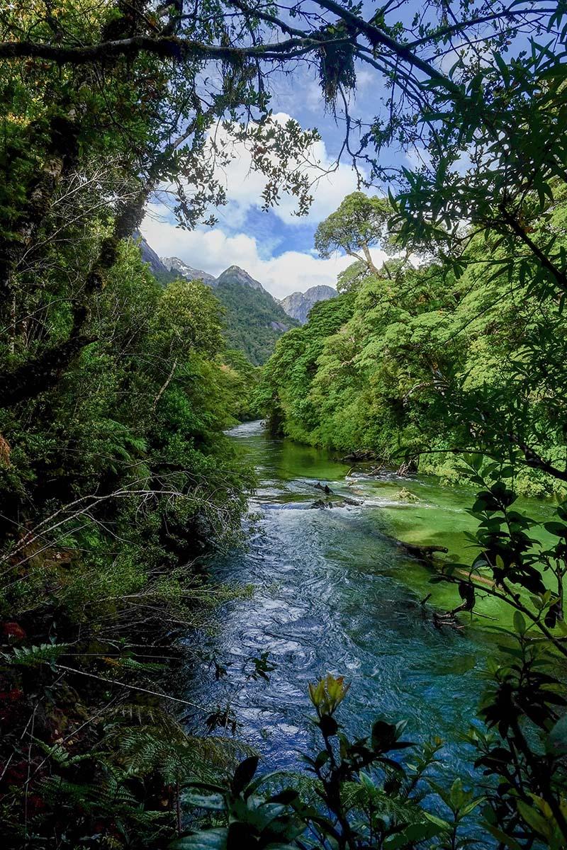 Cochamo (river)