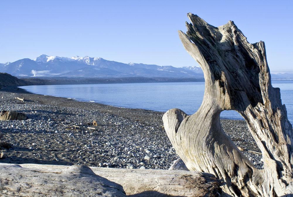 Dungeness Spit Washington