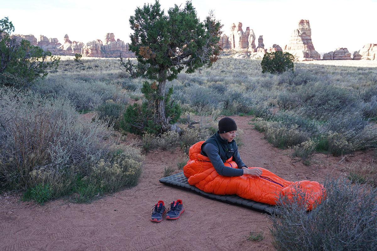 Patagonia 850 Down Sleeping Bag (Chesler Park 2)