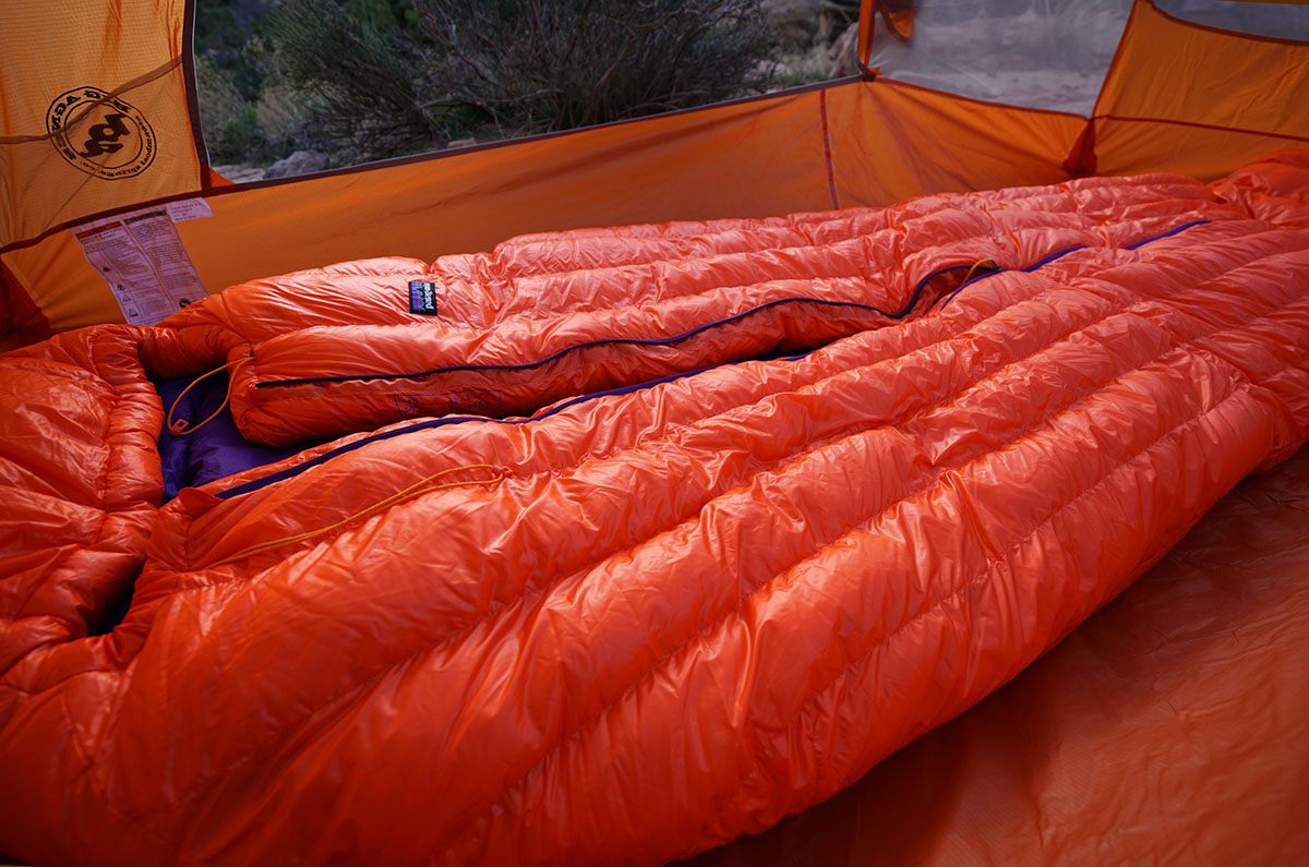 Patagonia 850 Down Sleeping Bag (loft)