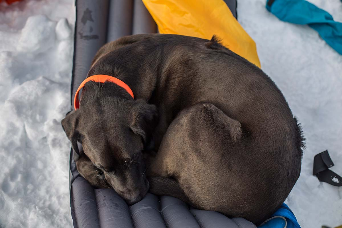 Best Camping Mattresses And Pads Of 2019 Switchback Travel