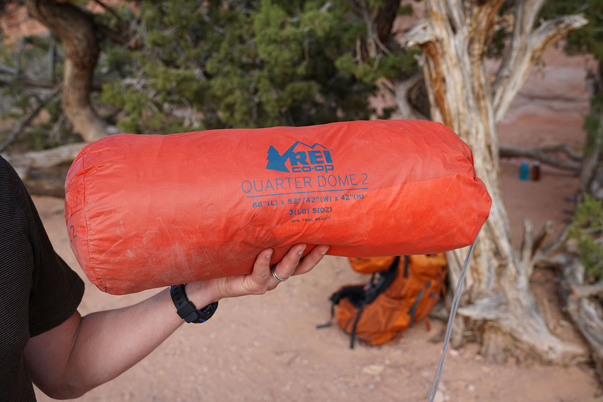 REI Quarter Dome (stuff sack)
