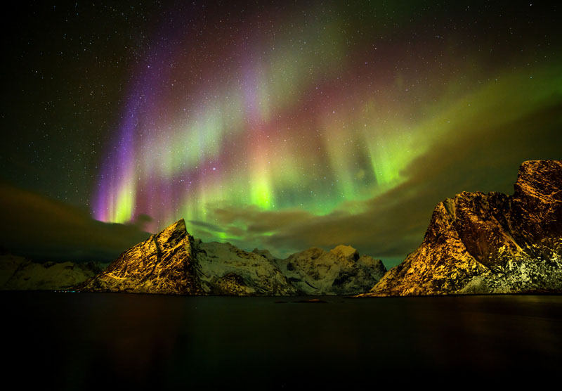 Reine Northern Lights