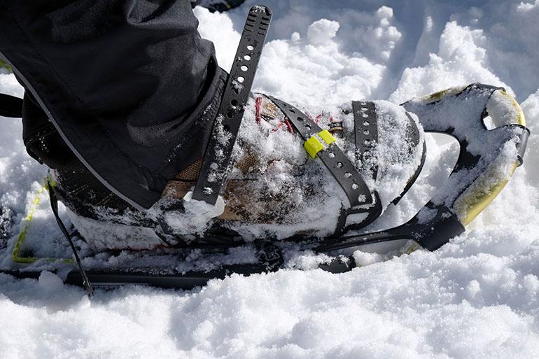 Schneeschuhbandbindung