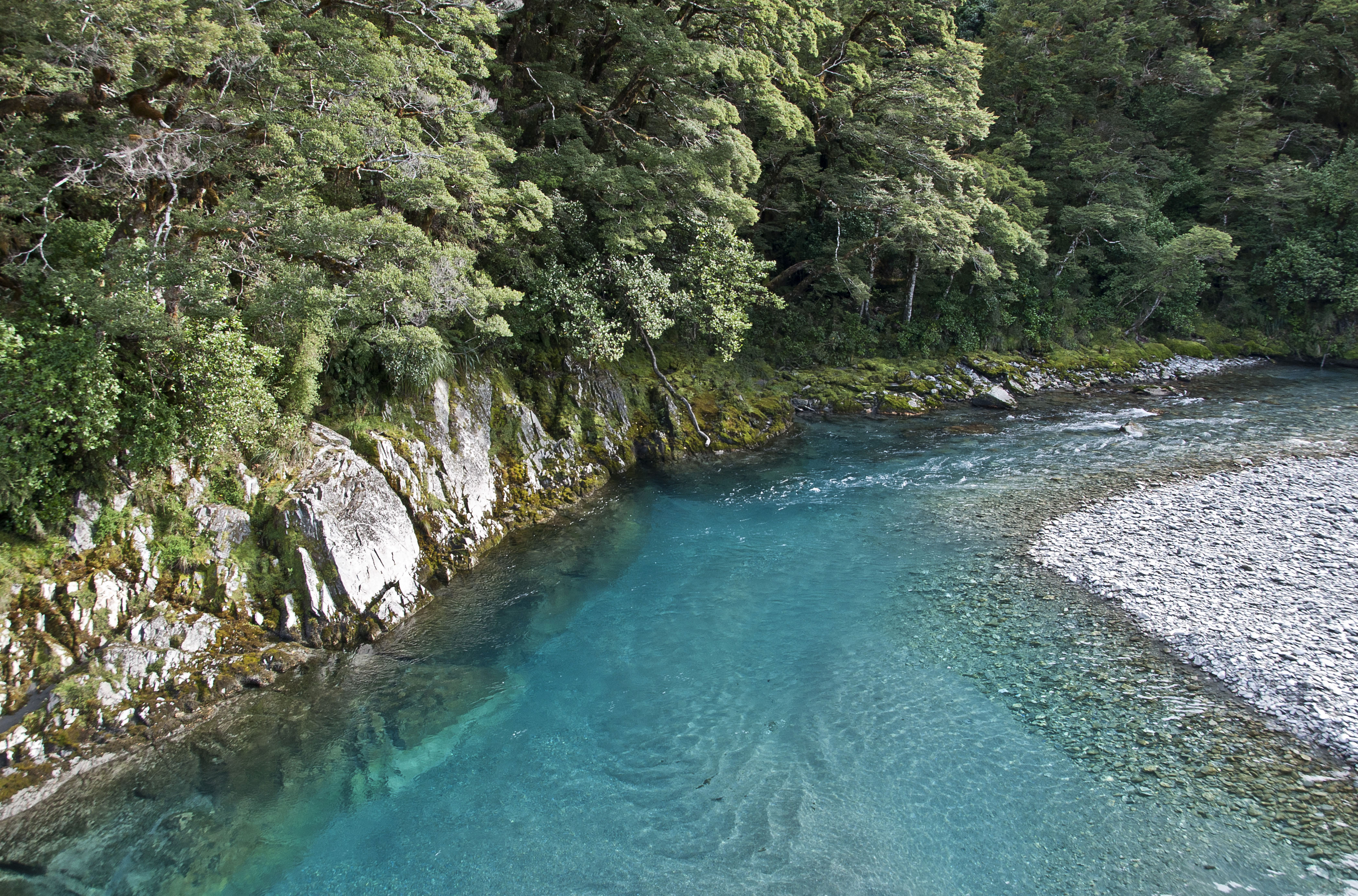 West Coast New Zealand - Blue Pools