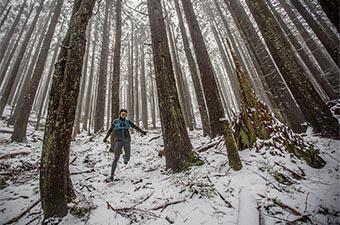 Arc'teryx Norvan SL Insulated jacket (running through snowy woods)