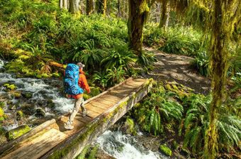 Hiking over bridge in Hoh Rainforest (Osprey Aether backpacking pack)