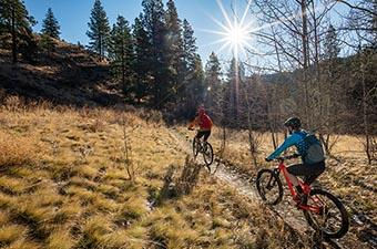 Mountain Bikes Pricing