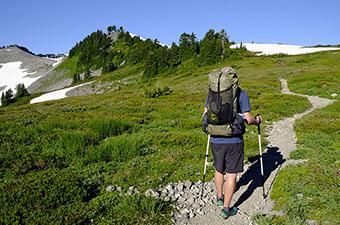 Trekking poles (hiking)
