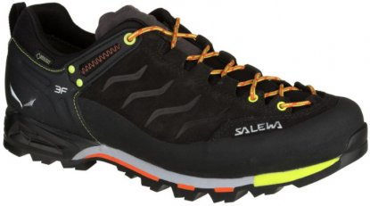 Salewa Mountain Trainer GTX approach shoe