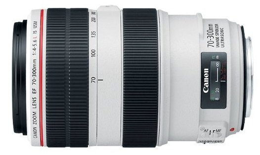 Canon 70-300mm f/4 lens