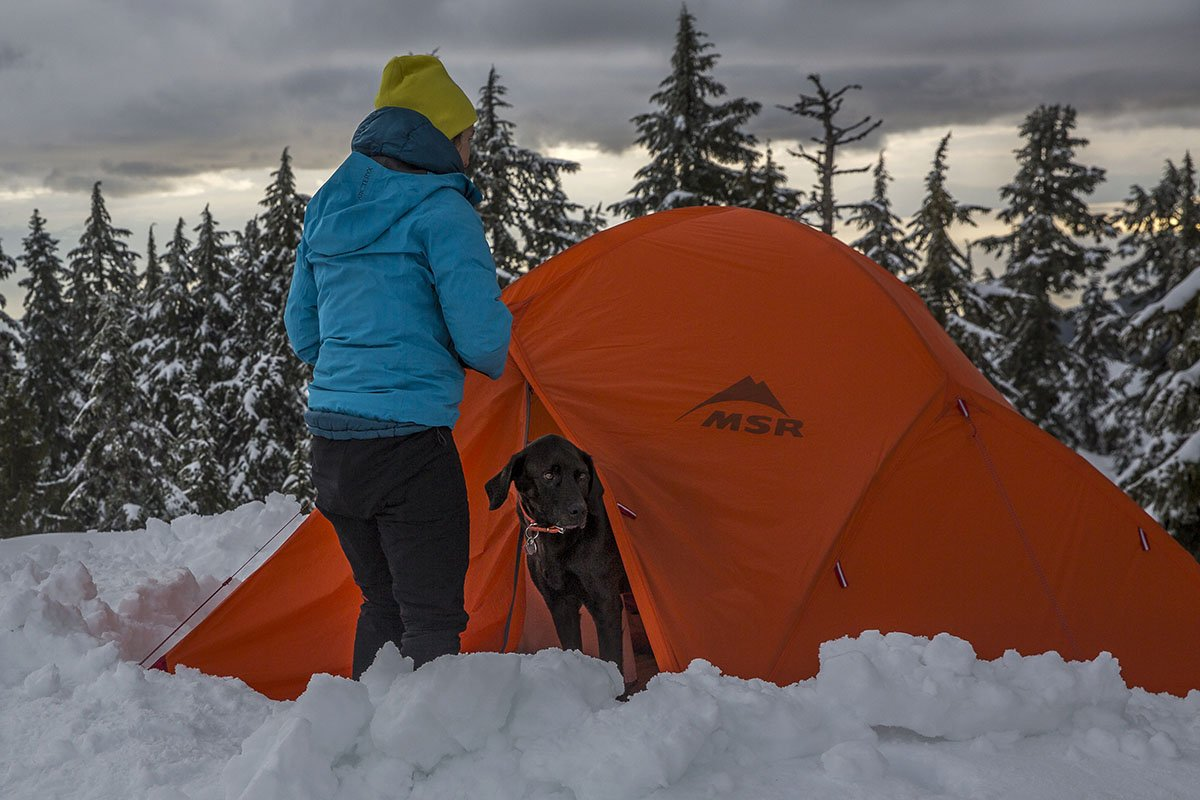 MSRu0027s Access tent is a great treeline option & Best 4-Season Tents of 2017-2018 | Switchback Travel