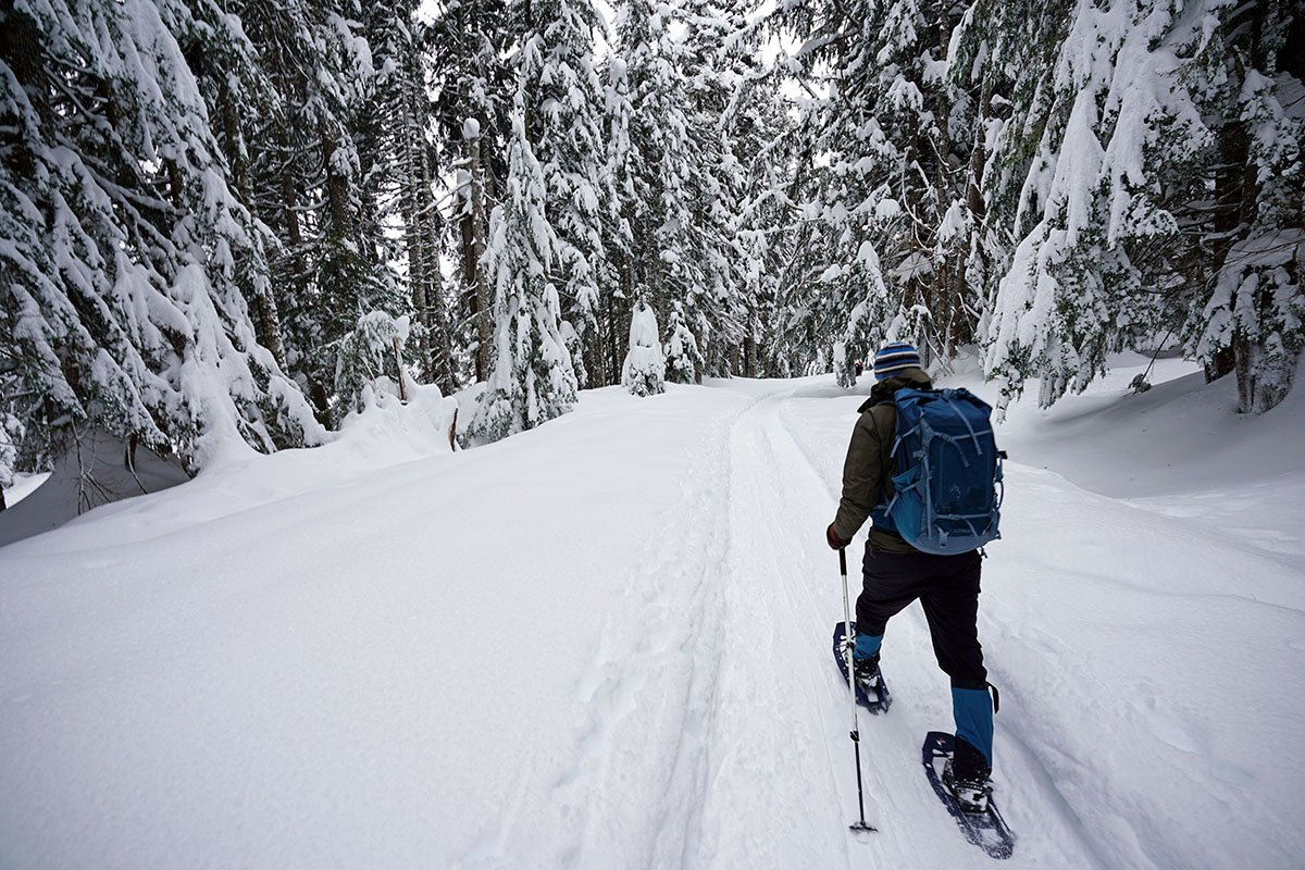 Snowshoeing wide angle (MSR)